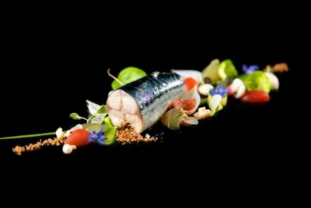 Mackerel, veg ala greque, dashi jelly