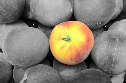 Peach B and W