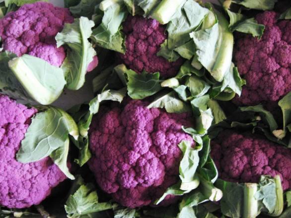 Cauliflower - Purple